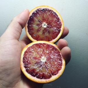【ブラッドオレンジ】